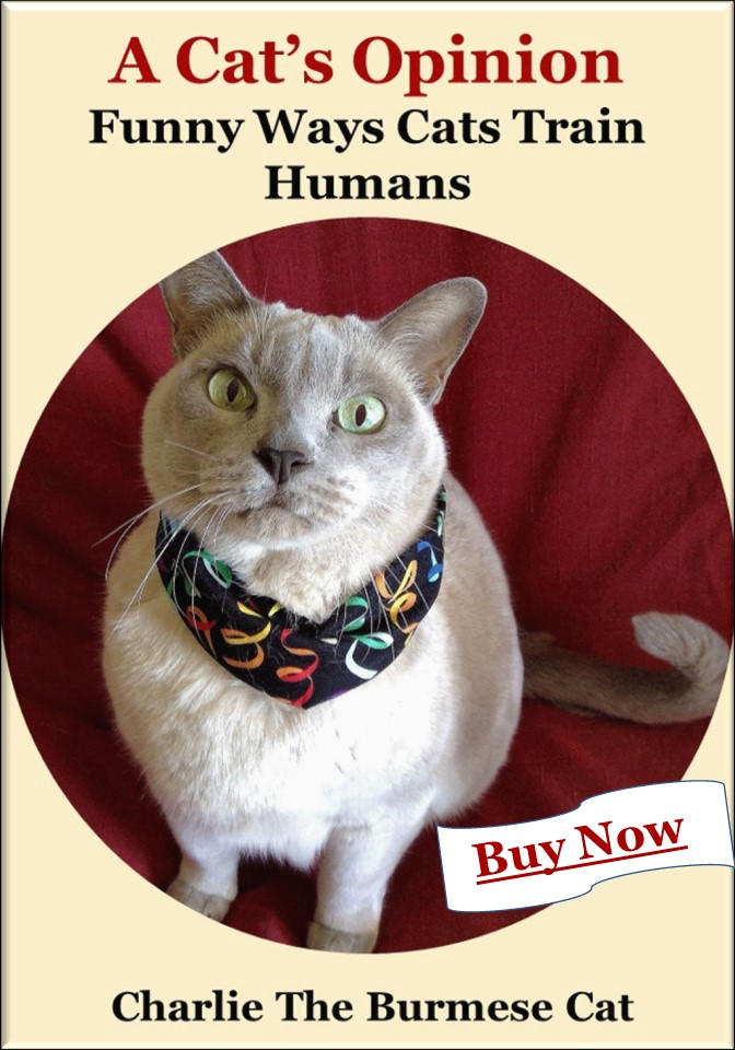 ebook about cats training humans